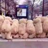 法國大罷工驚見萌身影!毛茸茸熊熊大軍化身通勤族包圍地鐵、商店