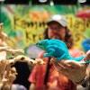Reptile Super Show 爬蟲類動物博覽會 (1/4-5)
