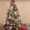 那些沒賣出的耶誕樹 後來去哪兒了?