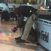 「你看帥不帥!」和警犬分享自拍 美國警員意外爆紅
