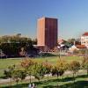 1/3學生將受惠!USC免學費方案年底分階段實施