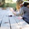 葡萄產量過盛!市場預測:加州葡萄酒價格未來數年史上最低