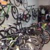 暴涨22倍!欧洲疯买大陆自行车 订单排到1个月后