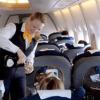 减少与顾客接触 多家航空暂停供酒