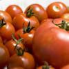 番茄料理上桌囉   湯、燉菜、麵樣樣低脂無負擔