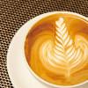 初学者也学得会!在家做出令人怦然心动的咖啡拉花
