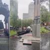 加國反種族歧視抗議升級 國父雕像也遭推倒
