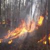 加州650多處野火 天氣轉涼有助控制