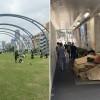 Parasite 真實版!日本美麗公園下是遊民的紙箱屋