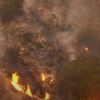 Breaking:山火蔓延至華人區 Arcadia 部分地區被下令撤離