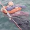 懸疑現蹤!她跟家人失聯整整2年 在海上漂流被救起