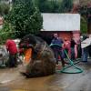 變種怪物?墨西哥下水道清出「巨型老鼠」 路過民眾全嚇傻