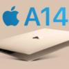 最便宜MacBook來了 有望低至$799美元起