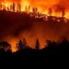 加州山林野火创纪录 烟雾弥漫天降灰