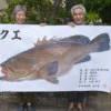 真人版「老人與海」!日71歲漁師搏鬥3小時 釣上巨大石斑