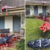 德州電鋸殺人狂造訪!超狂萬聖節布景驚動警方上門