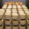 受第二波疫情衝擊 全美 Cheese 價格今年來暴跌逾10%