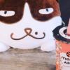 Momo Ashi Cafe  充满汪星人和喵星人生活智慧的小饮料店