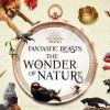 Fantastic Beasts 的奇獸 現身倫敦自然史博物館