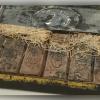 澳图书馆发现120年前巧克力!看似可吃但闻起来怪怪的