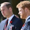 兄弟情难修复?葬礼计画曝光 哈利、威廉不「并肩走」