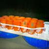 Santa Barbara 學生自製船海上漂流獲救