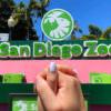 """【 哇靠 Funlicius 】""""漫""""遊 San Diego Zoo ! 動物園也可以是情侶約會聖地"""