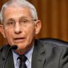 Fauci:Delta變異株為美國根除疫情最大威脅