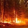 強風助長下 加州野火危機岌岌可危