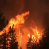 加州野火5人失蹤燒毀面積逾洛杉磯  僅21%火勢獲控制