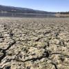 加州乾旱灌溉水遭斷 農民砲轟政策荒謬