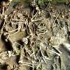 兩千年前古羅馬人飲食 男女海鮮攝取量大不同