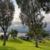 Pomona 后花园的爬山经  🐶 带着狗狗体验 Bonelli Park Trail