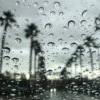 本季度首支暴風雨今日來襲洛杉磯  ⚠️ 同時會有大風、洪水、大浪警告