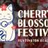 OC Cherry Blossom Festival 橙縣櫻花節 (3/13-15)