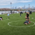 纽约公园地上画白色圆圈保持防疫社交距离 网惊呼:根本人体停车场