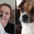 小狗「雙眼長毛」準備被安樂死 獸醫檢查發現:牠根本沒瞎