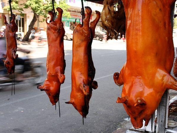 street food11