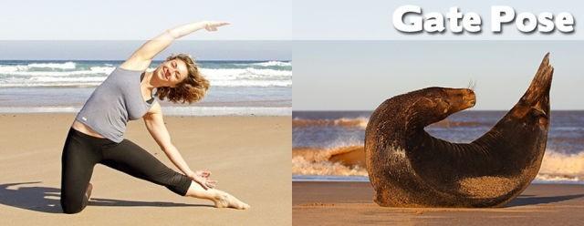 yoga poses05
