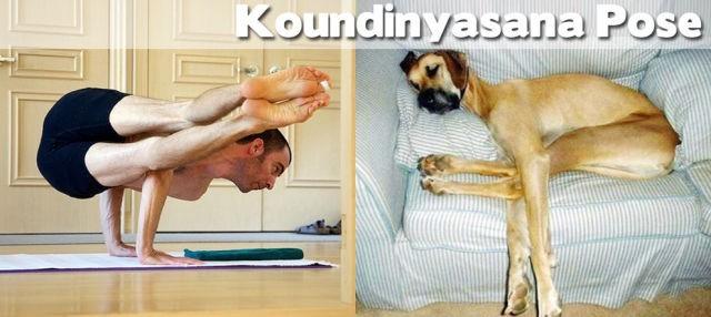 yoga poses06