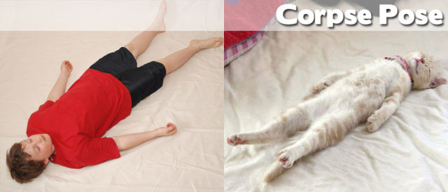 yoga poses27