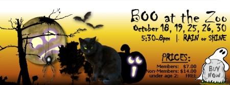 kids-halloween-event-018