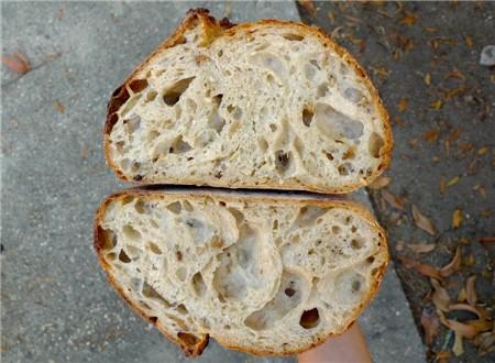 Clark_Street_Bread