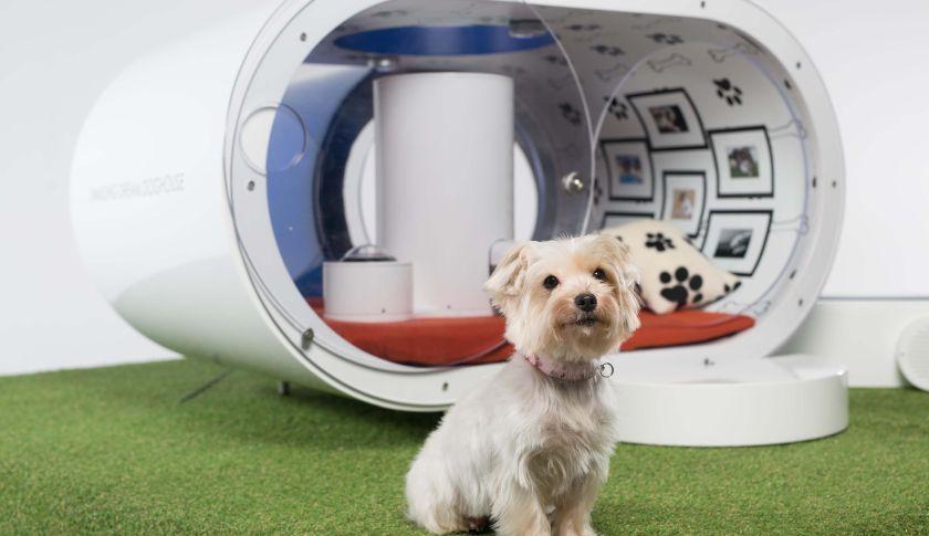 samsung-dog-kennel
