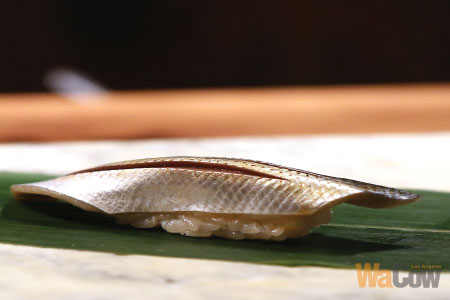 q-sushi-003