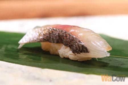 q-sushi-004