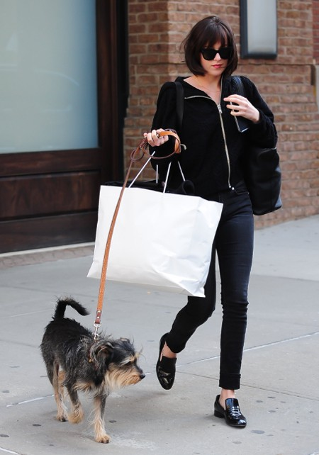 dakota_johnson dog wacow