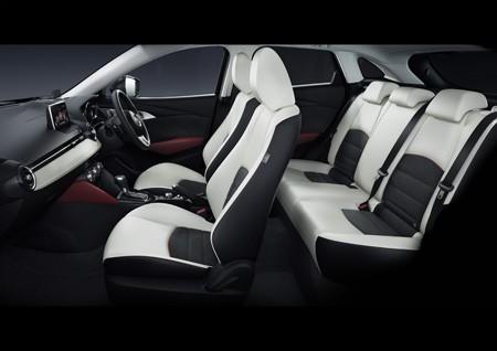 2016 Mazda CX-3 (24)