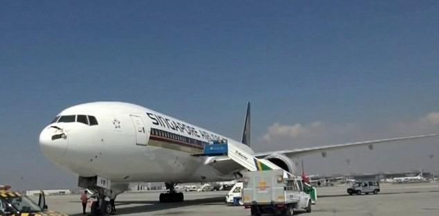 """Pic shows: The damaged plane after being hit by a flock of storks A Singapore Airlines plane has made an emergency landing in Turkey after running into a flock of storks. The Singapore-bound Boeing 777-200 took off from Istanbul Ataturk Airport at 1.30pm on August 17, with 255 passengers and 14 crew members aboard. The plane ran into a flock of storks while gaining altitude, damaging its radome, a weatherproof protective shield for its radar antenna. The collision also inflicted damage on various other parts of the plane, including an engine on its left-hand side. An hour and ten minutes after taking off, the plane made an emergency landing in Istanbul at 2.40pm. The passengers were transferred to a hotel while Singapore Airlines reportedly arranged to bring another plane to Istanbul. Meanwhile, Turkish Airlines technical teams took the damaged Boeing to maintenance. An airport spokesman said: """"In three quarters of cases of bird strike inflicts no serious damage on the plane although it's always fatal for the bird. Obviously a flock of storks which is a much larger than average bird is another matter."""""""