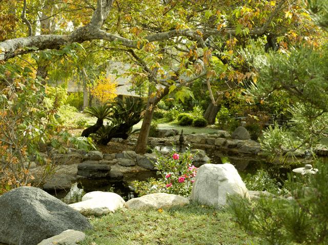 Storrier Stearns Garden1